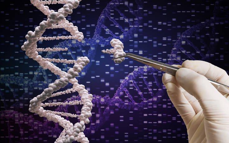 Βρέθηκαν 500 γονίδια της εξυπνάδας